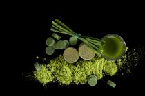Hierba de trigo wheatgrass FANYA