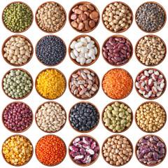 Semillas más usuales para germinar y de consumo FANYA